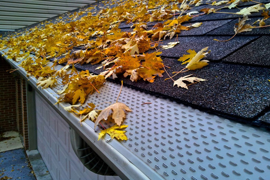 Leaf Shelter Gutter Guards